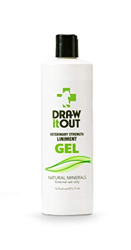 Draw It Out Liniment Gel - Veterinary Strength - Odorless and Colorless - Pain Relief Topical Analgesic Horse Cream for Joint and Muscle Pain - Natural Mineral - 16 oz