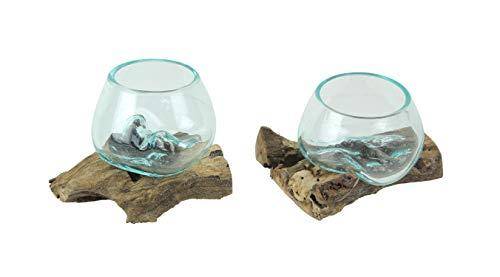 Zeckos Set of 2 Blown Molten Glass On Teak Driftwood Decorative Bowls Vases Terrariums Planters