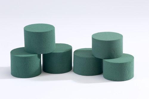 6 x Oasis Ideal Round Cylinder Wet Foam for Florist Floral Craft Flowers Floristry Designs & Displays by Smithers Oasis