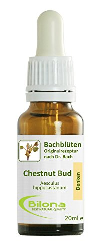 Joy Bachblüten, Essenz Nr. 7: Chestnut Bud; 20ml Stockbottle