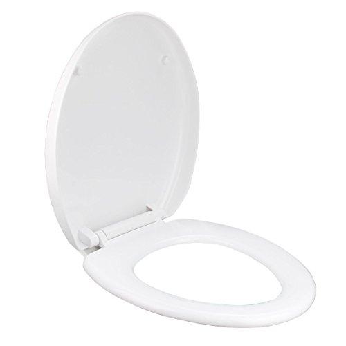 /Couvercle Si/ège de toilettes Odeon Up 8407/K-00 Jacob Delafon/