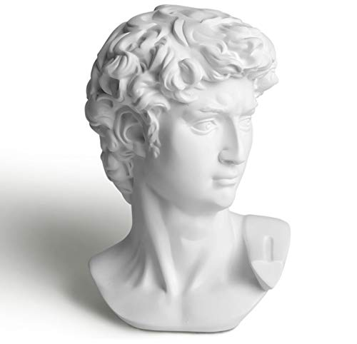 "Garwor 6"" Classic Greek David Head Resin Sculptures and Statues, Home Décor Office Décor, Michelangelo David Bust Figurine"