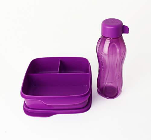 Clevere Pause TUPPERWARE to Go Lunchbox 1X 550ml Fuschia mit 3-Fach Einteilung + 310ml Eco Easy Trinkflasche to go Fuchsia/Lila + Kiwilöffel