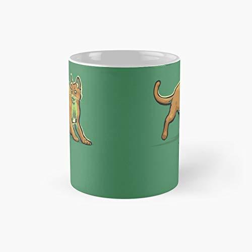 Fruitcats Kiwi clásico taza mejor regalo divertidas tazas de café 11 oz