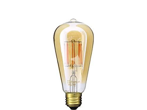 ビートソニック OnlyOne(オンリーワン) LED電球 Siphon(サイフォン) エジソン電球形 30W形相当 暖系電球色(2200K) E26 5.0W 400lm クリアガラス(ゴールドペイント) LDF30A