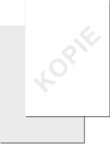Kopierschutzpapier, DIN A4, 90g/m², 100 Blatt, ohne Wasserzeichen