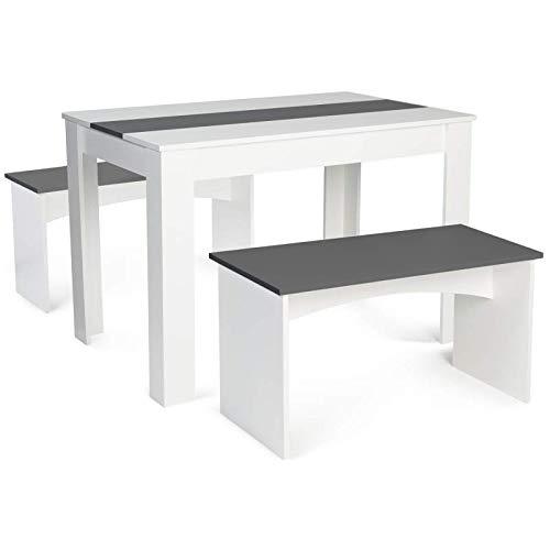 IDMarket - Ensemble Table à Manger et 2 bancs ROZY Blanc et Gris