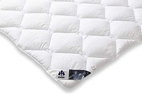 Badenia Bettcomfort Irisette Edition Steppbett, Mono Bettdecke für den Übergang, 200 x 220 cm, weiß
