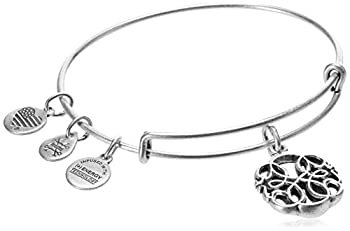 Alex and Ani Path of Life A17EB29RS IV Rafaelian Silver Bangle Bracelet