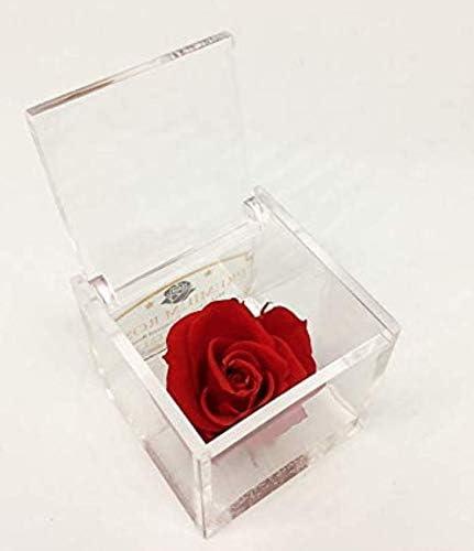 343 opinioni per A 1050 Cubo Rosa Stabilizzata Rossa 5cm 5x5x5 profumata, Il Cubo con Una Vera e