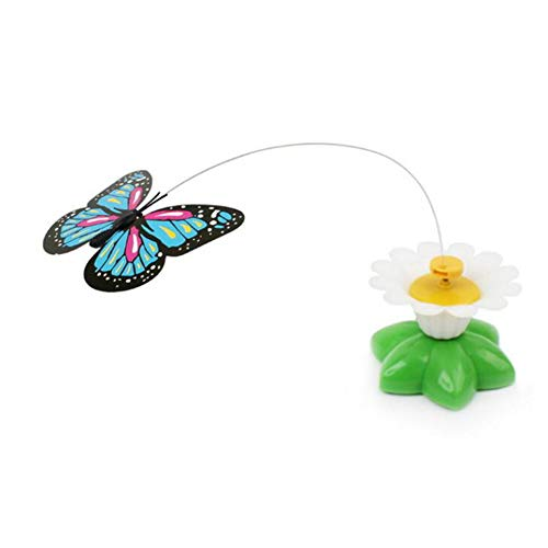 XINYANG Rotante Colorful Butterfly Funny Dog Cat Toys Uccello Pet Seat Scratch Toy per Cat Kitten Cane Gatti intelligenza Trainning,Butterfly