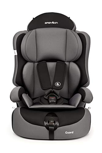 BABYLON silla bebe coche...
