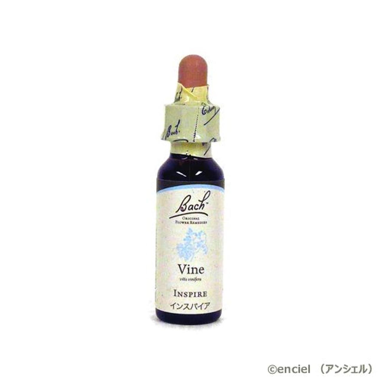 ゲージ治安判事ディレイバッチフラワー レメディ バイン(VINE) 10ml グリセリンタイプ 日本国内正規品