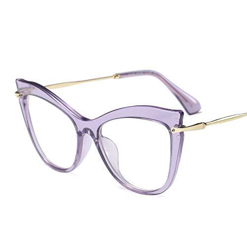 BERYLSHOP Gafas de Lentes Transparentes sin Receta clásicas, Montura de Gafas Retro (Color : Purple)