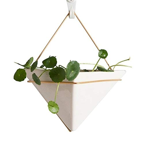XINXI-YW Conveniente Plantas de Flor de Hierro escandinavo Estilo Cerámica Blanca Maceta de Oro Bote Verde Plantas suculentas Pot decoración de Interiores Decorativo (Color : Triangle)