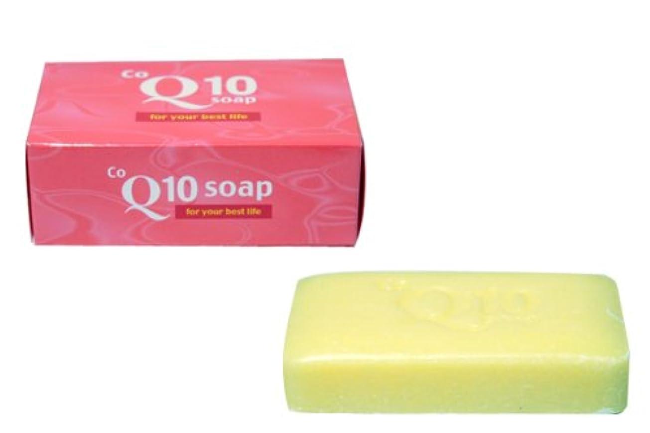 レモン思春期のペレットコエンザイムQ10石鹸 10個セット