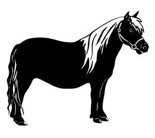 SUPERSTICKI Pferd Pony Islandpferd 20cm Aufkleber,Autoaufkleber,Sticker,Decal,Wandtattoo, aus Hochleistungsfolie,UV&waschanlagenfest,