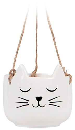 Grindstore Dekorative Verzierung Cat's Whiskers Hanging Pflanzer