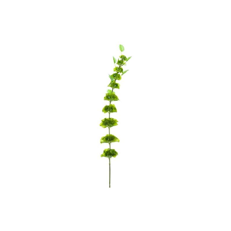 "silk flower arrangements 33"" silk bells of ireland flower spray -green (pack of 12)"