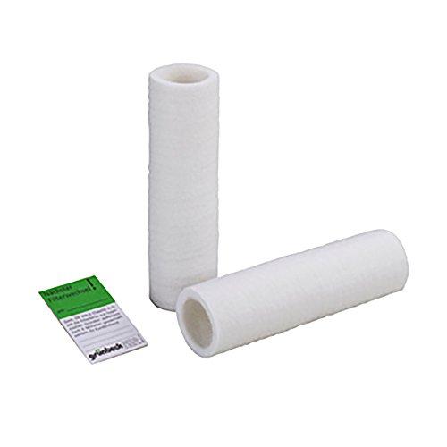 Grünbeck Geno filterkaars, waterfilter voor onthardingsinstallatie, set van 2, zonder beschermklok, 103 070, meerkleurig