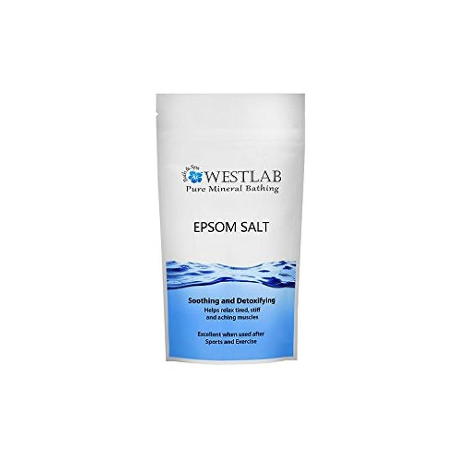 まだ不十分な水陸両用エプソム塩の1キロ x4 - Westlab Epsom Salt 1kg (Pack of 4) [並行輸入品]