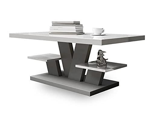 VIVA - Tavolini da Salotto - Tavolino da Caffè - Tavo Salotto - di buon Gusto ed Elegante - Universale Tavolo da Fumo Salotto - Tavola Saloto - Tavolo di Medie Dimensioni 110x60x45cm (Grigio Chiaro)
