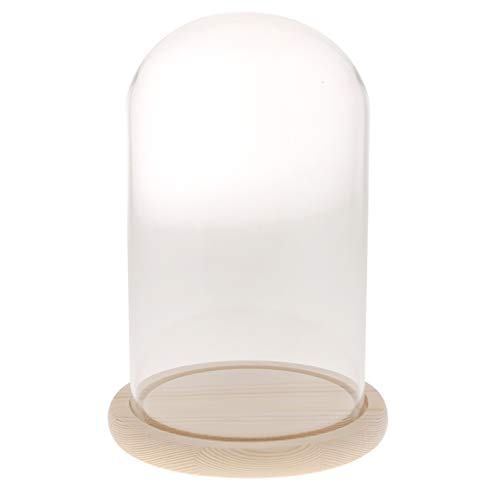 FLAMEER Deko Glasglocke Transparente Glashaube Glassturz mit Holzteller - F