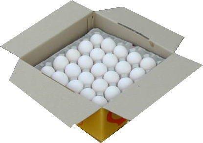 加賀の白雪 50コ詰め 新鮮卵 健康卵
