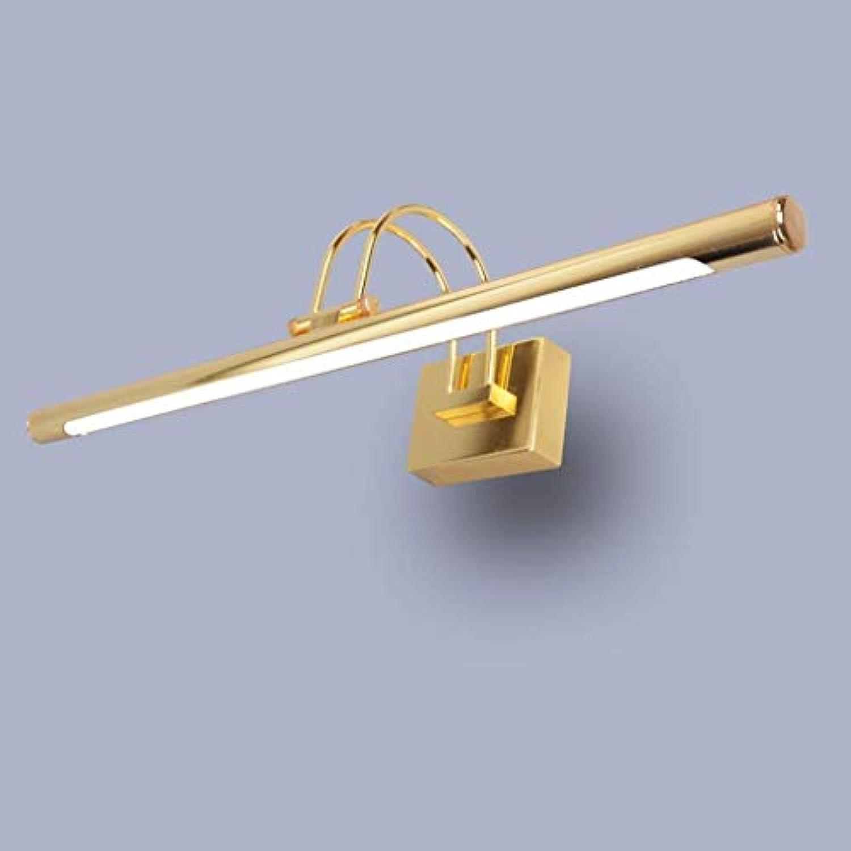Spiegel Lampen LED-Spiegel Scheinwerfer, Gold Spiegel Vorne Licht Kipphebel Spiegelschrank Beleuchtung Dressing Leuchten Badezimmer Leuchten (Farbe  Wei -41 cm)