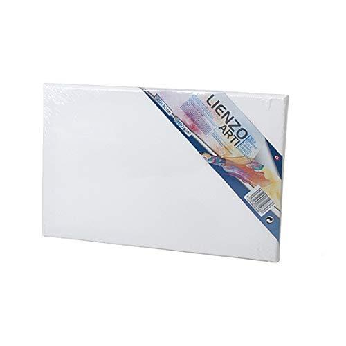 EUROXANTY Lienzo para pintar | Lienzo de tela | Bastidor de madera | Para todo tipo de técnicas de pintura | Tela de 380 g m2 | Lienzo de espesor 16 mm | 20 x 30 CM