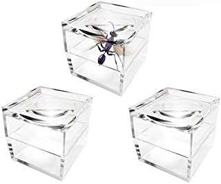 MagniPros Pack of 3 Magnifier Box Bug Viewer Magnifies up to 5X(500%) with Crystal Clear Image