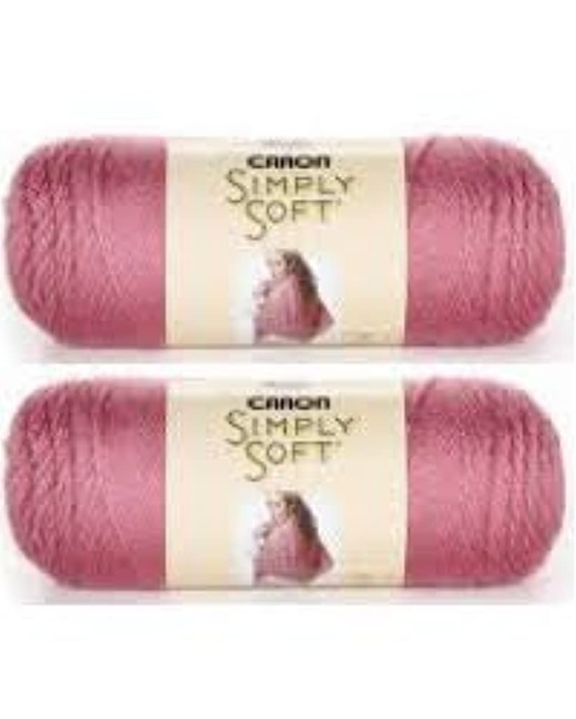 Bulk Buy: Caron Simply Soft Yarn Solids (2-pack) (Plum Wine)
