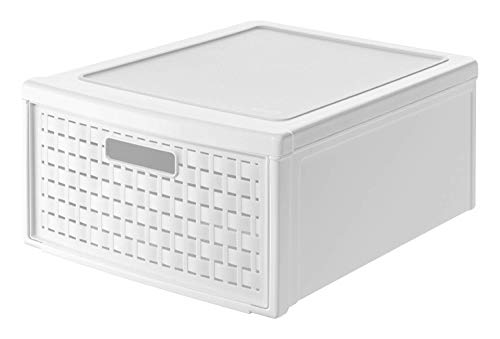 Rotho Country Cassettiera 19.2l con 1 cassetto in rattan, Plastica PP senza BPA, Bianco, Grande /19.2l 45.0 x 34.0 x 20.0 cm