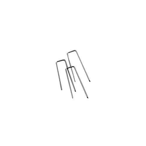 Rayher 2106500 Strohblumennadeln, Beutel 100 Stück, 25 x 5 mm, für floristische Arbeiten, Kränze, Gestecke