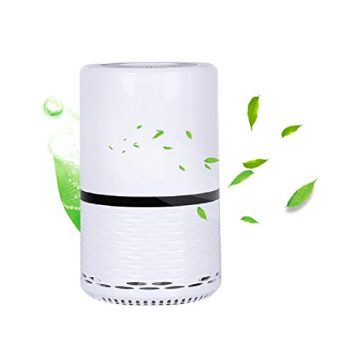 Lowest Price! MMFXUE Air Purifier with True HEPA,Active Carbon,Cold Catalyst Filter, Compact hepa Fi...