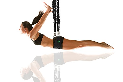 1UP Gravity Pro - Bungee Workout Trainer with X-Piece