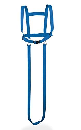 Janna natural goods Pferdegeschirr für Kinder von 3 bis 12 Jahre - Pferdeleine zum Spielen für Mädchen Jungen in blau - Reiter Pferdezügel 2-teilig Halfter und Laufleine draußen
