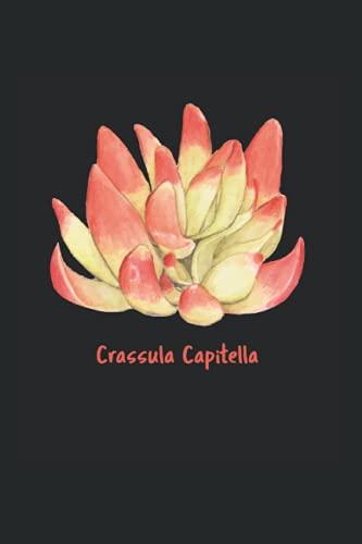 Crassula Capitella Sukkulenten: DIN A5 Liniert 120 Seiten / 60 Blätter Notizbuch Notizheft Notiz-Block Lustige Sukkulenten Spruch für Botaniker Pflanzenliebhaber