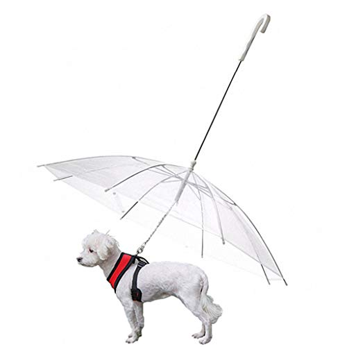 Pet Love Haustier Regenschirm, Weißer Transparenter Haustier-Plastikregenschirm Für Hund, Faltbar Wasserdicht, Geeignet Für Kleine Und Mittlere Hunde