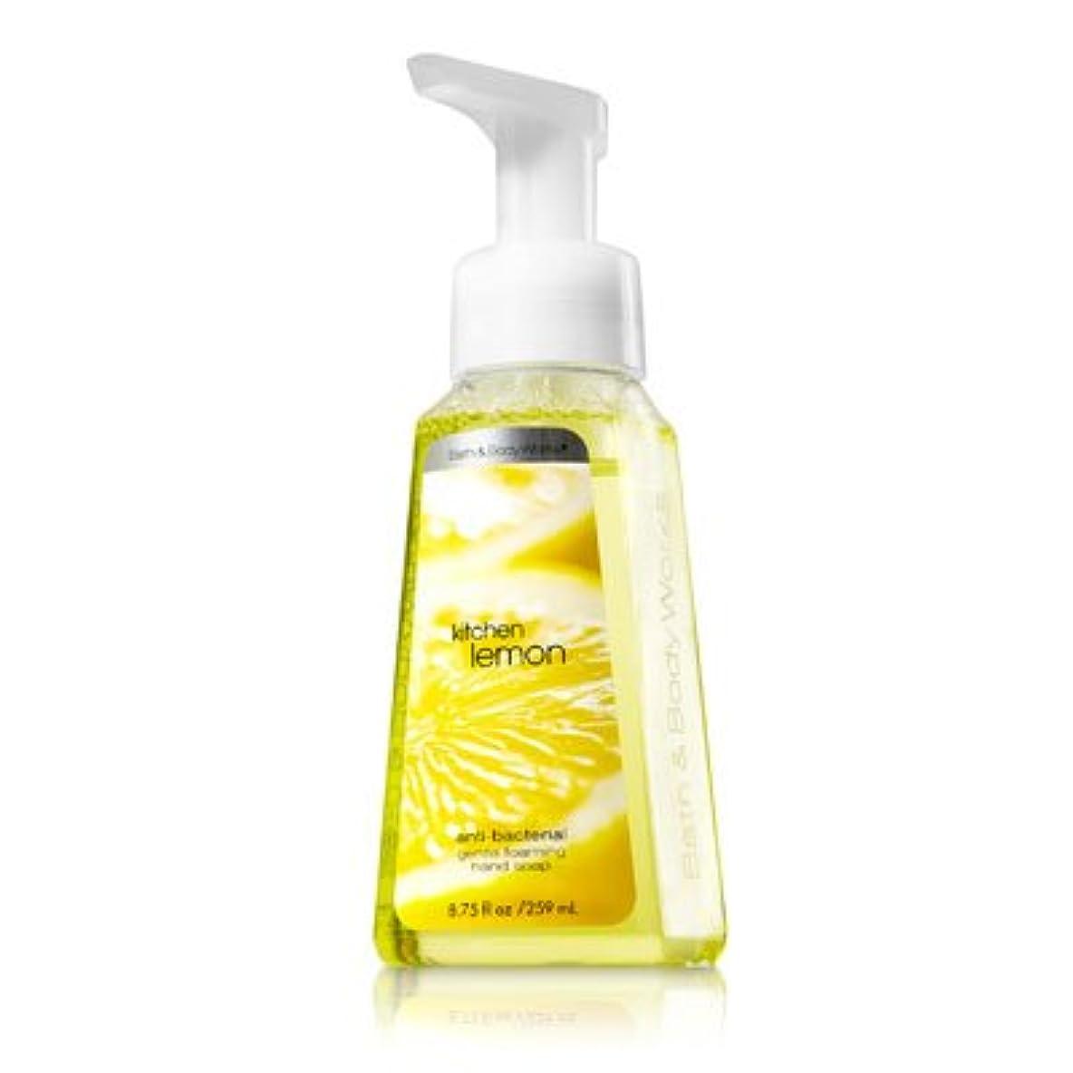油トレーニングバタフライバス&ボディワークス キッチンレモン ジェントル フォーミング ハンドソープ Kitchen Lemon Gentle Foaming Hand Soap【並行輸入品】