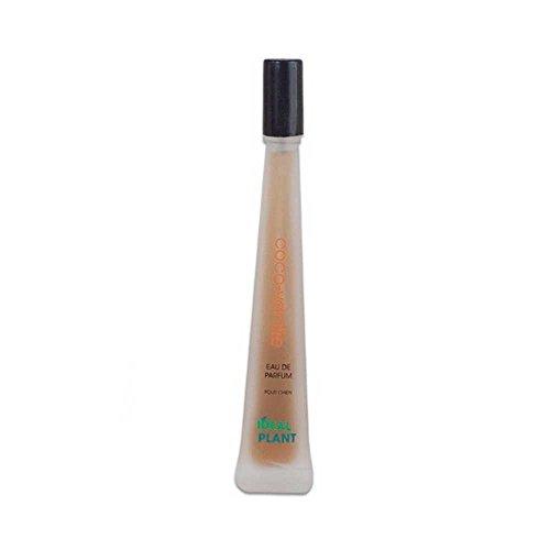 Parfum Coco-Vanille 30 ML Ideal Plant