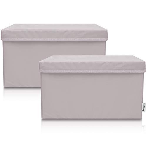 Lifeney 2-Set Aufbewahrungsbox Kinder (37x25x21cm) I Aufbewahrungskorb für Kinderzimmer und Wohnbereich I Kinder Aufbewahrungskiste (Hellgrau)