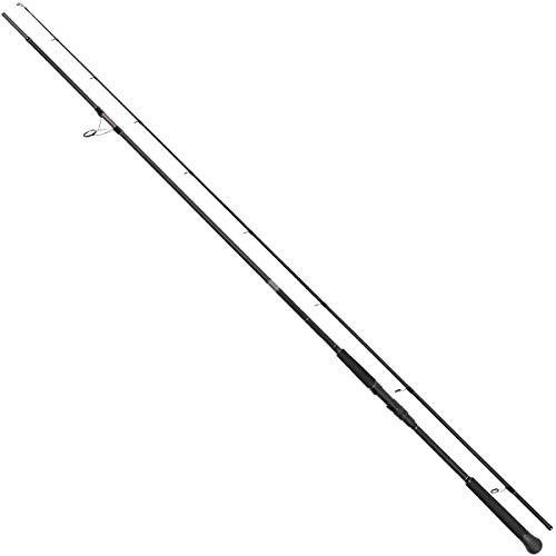 TAKAMIYA(タカミヤ) REAL METHOD SEABASS-GRII HIRA SPECIAL 110H