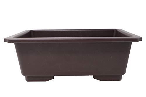 Rectangle Deep Brown Plastic Bonsai Training Pot (LD-F013-12) (1)