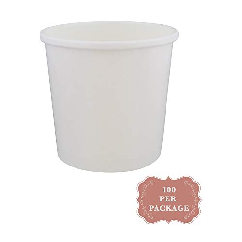 Spec101 Ice Cream Tubs with Lids - 16 Ounce Ice Cream Containers, Homemade Ice Cream Storage Containers, 25 Pack