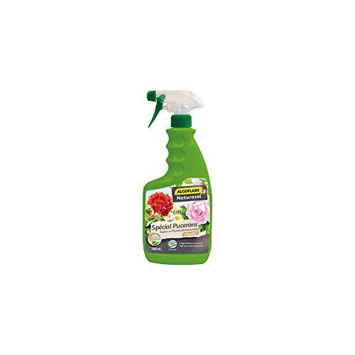 Naturasol BIOPUCPRETAN Traitement Anti-Insectes, Neutre