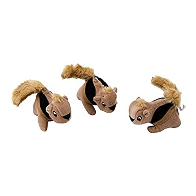 Plush Squirrel 3 Pack of Squeaky Dog Toys