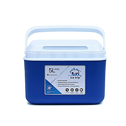 mementoy Caja de almuerzo pequeña del refrigerador 5L para la bebida, la fruta, la leche, el etc.
