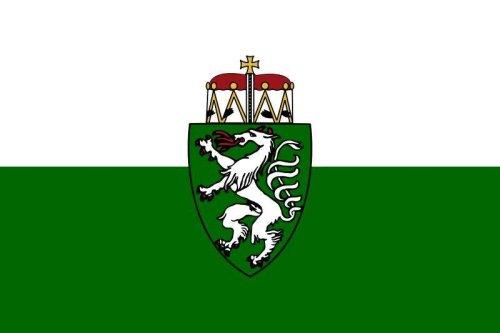 Steiermark  Flagge Fahne 90 * 150 cm