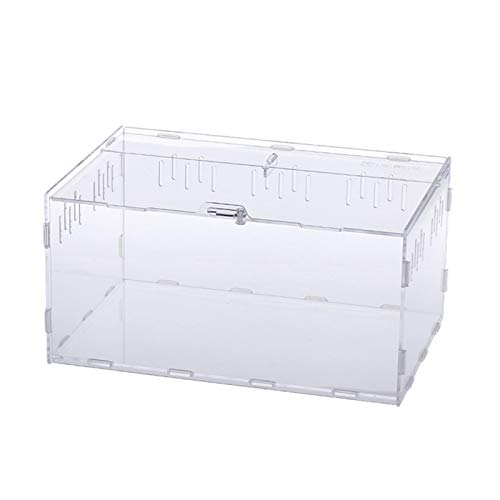 arthomer Aufzuchtbox für Reptilien, transparent, Futterbox, aus Acryl, für Krabben, Eidechsen, Geckos, Frosche, Spinnen und kleinere Reptilien, 30 x 20 x 15 cm